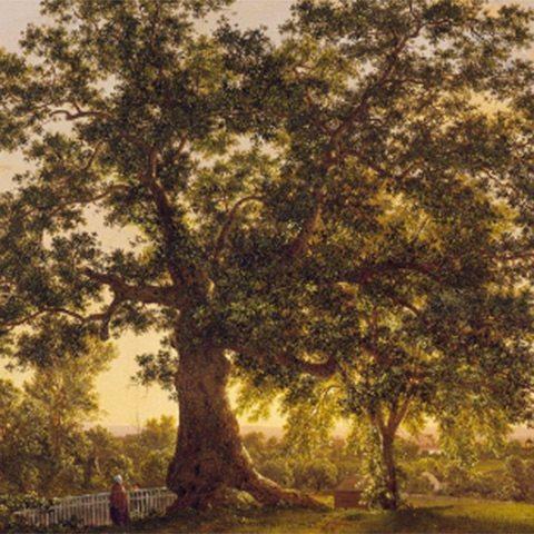 Exhibition: The Artist in the Connecticut Landscape