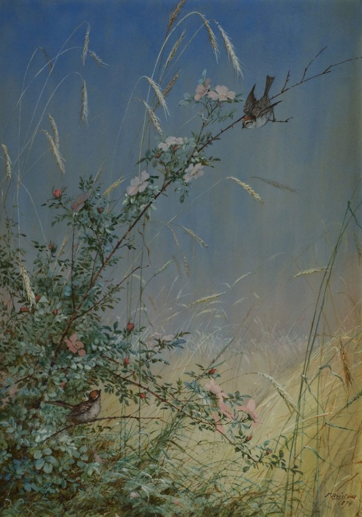 Exhibition Note: Fidelia Bridges' Forgotten Summers